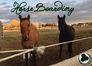 HCS Horse Boarding