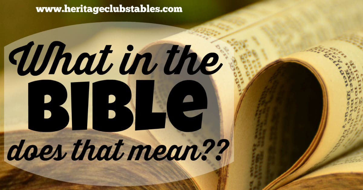 "Have you ever read passages in the Bible and said, ""What in the Bible does that mean?"" There are Bible verses we all wish were clarified more"