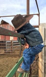 Cowboy lifestyle