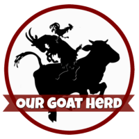 our-goat-herd