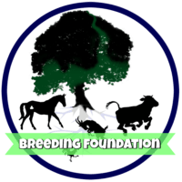 breeding-foundation