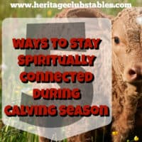 It's not worth it to lose ground spiritually during this time either. Here are 5 ways you can stay spiritually connected during calving season
