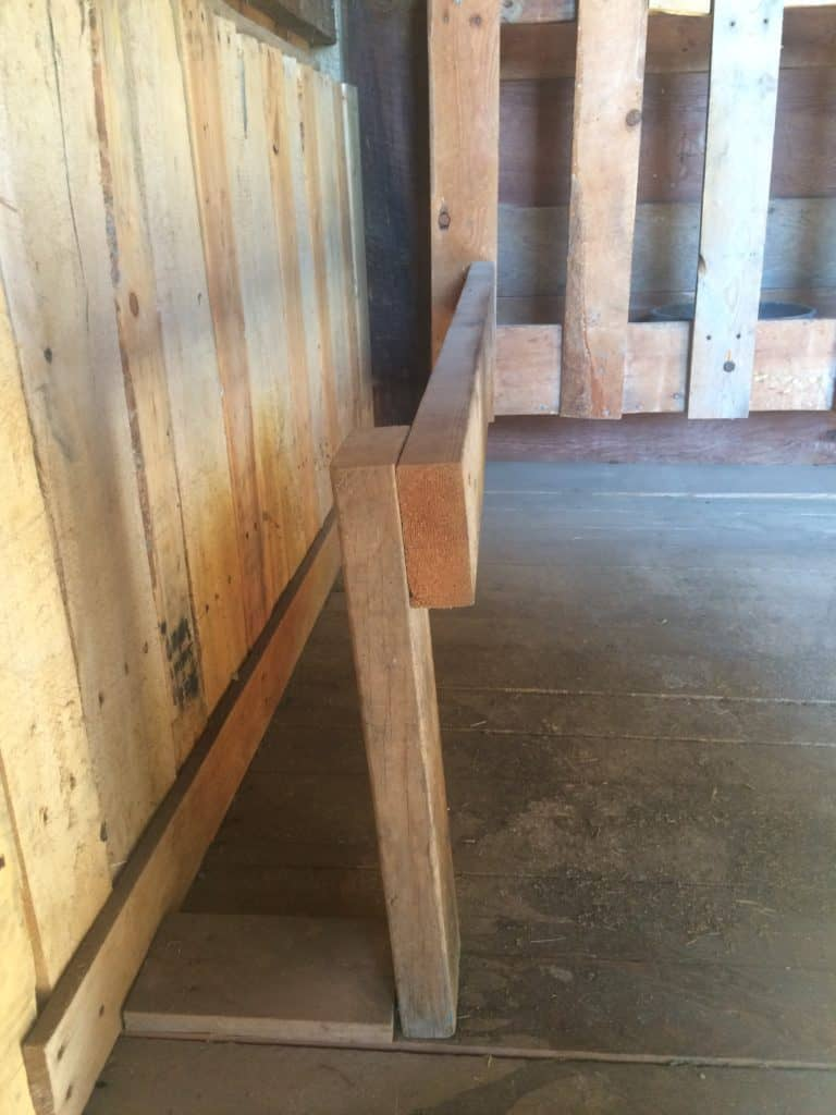 There are many options for a milking stand and they are easy to build. I will share with you how I built mine to give you an idea of what may work for you.