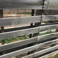 FENCING OPTIONS FOR SMALL ANIMALS