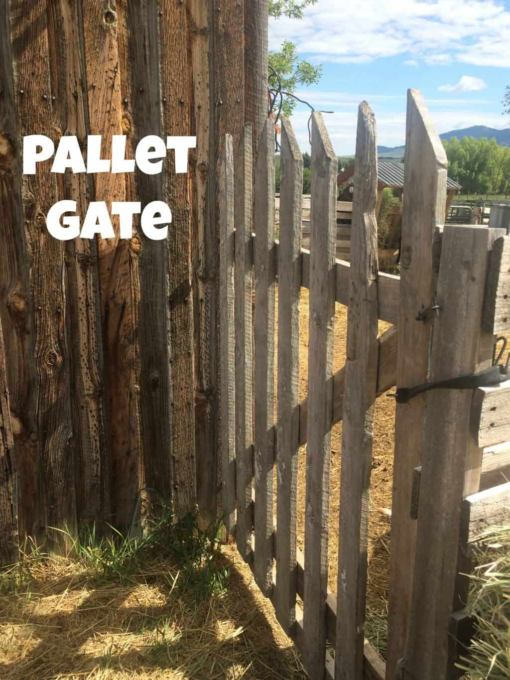 Pallet Fence Great For Small Livestock