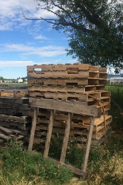 A pile of pallets to be used for our fencing for our goats