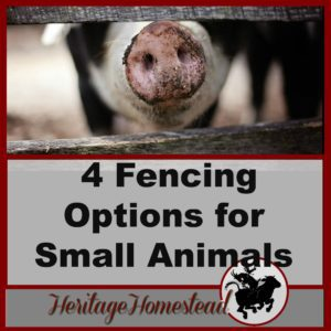 Fencing for Goats and Small Livestock