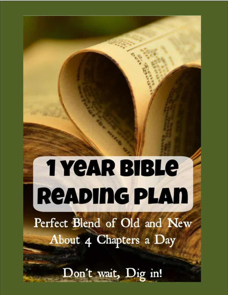 thumbnail of 1 year Bible reading Plan