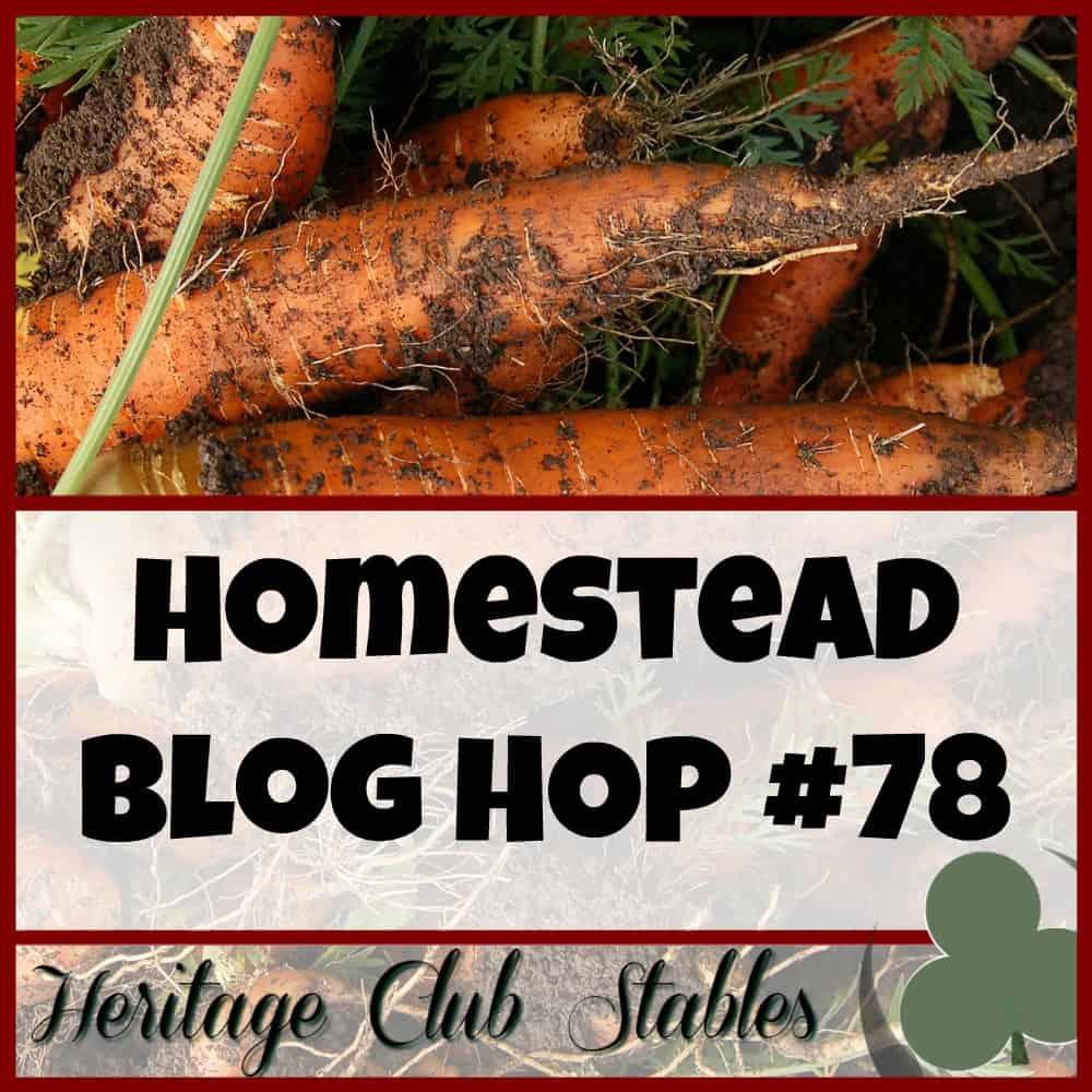Our Simple Homestead Blog Hop #78