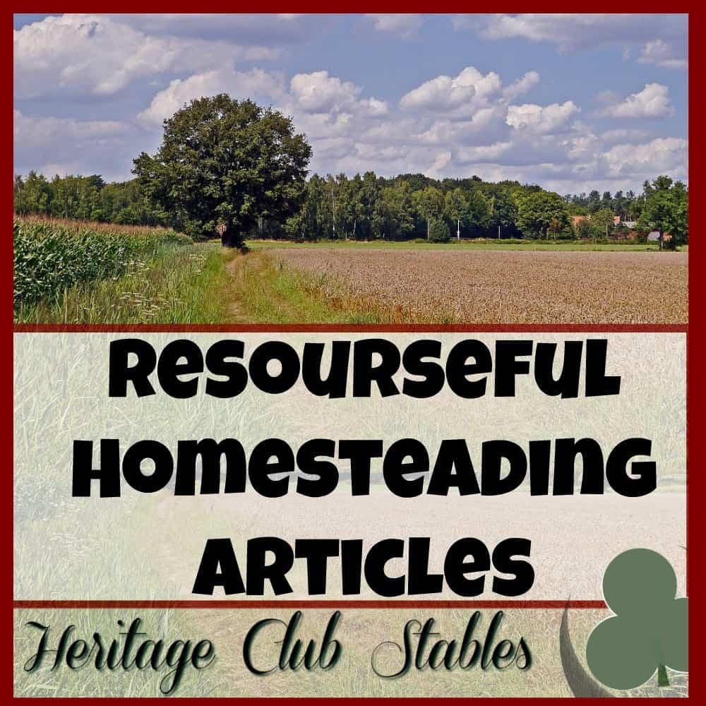 Our Simple Homestead Blog Hop #77