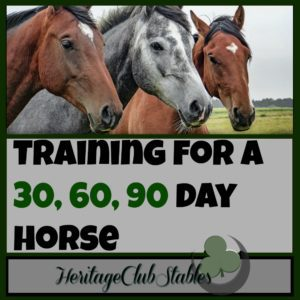 """Horses 