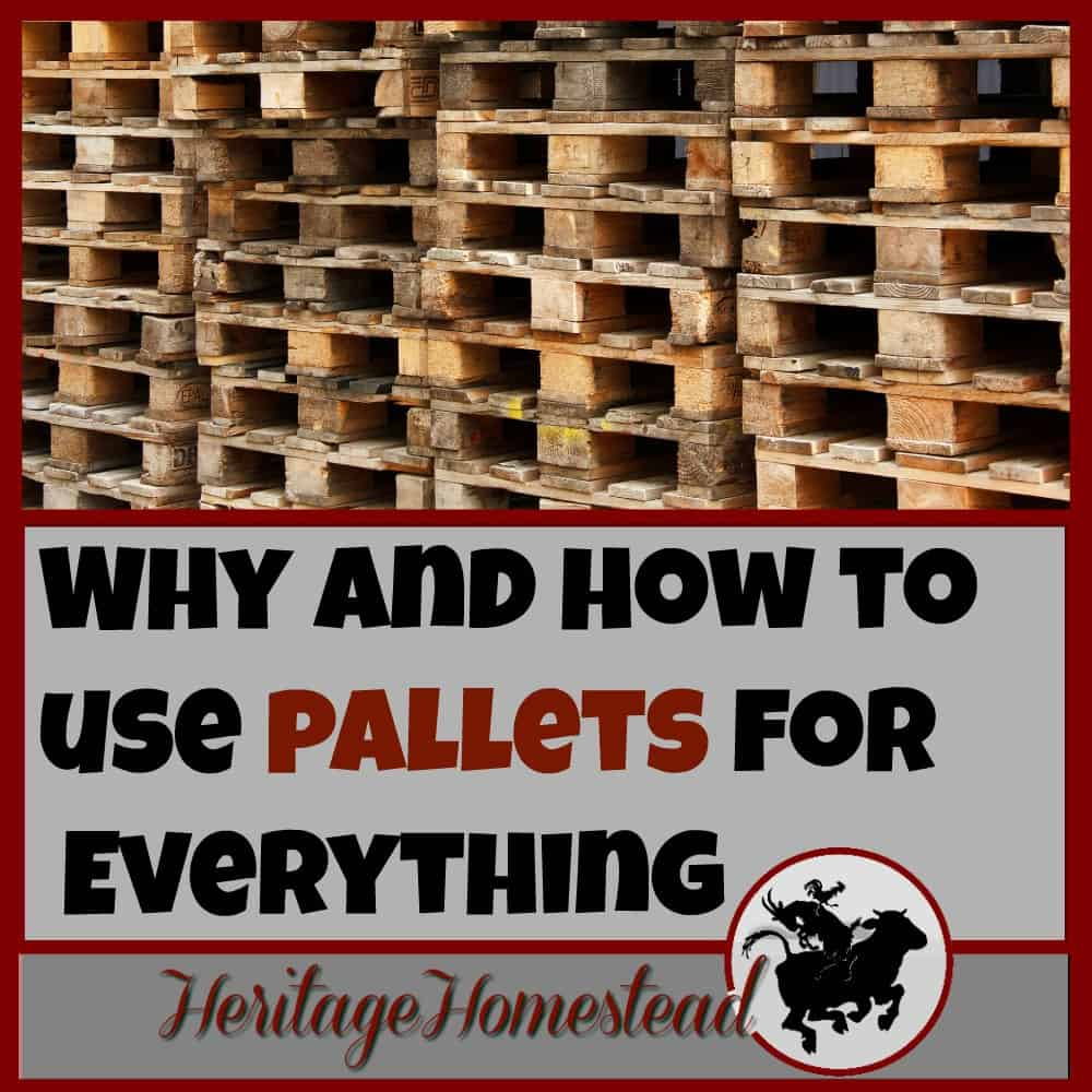 Why and How To Use Pallets…for EVERYTHING!