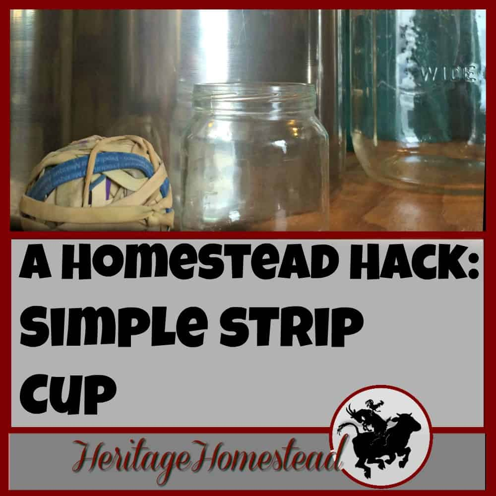 A homestead hack: a simple strip cup for milking. Would you love to have a simple, FREE alternative to a strip cup? We've got the solution!