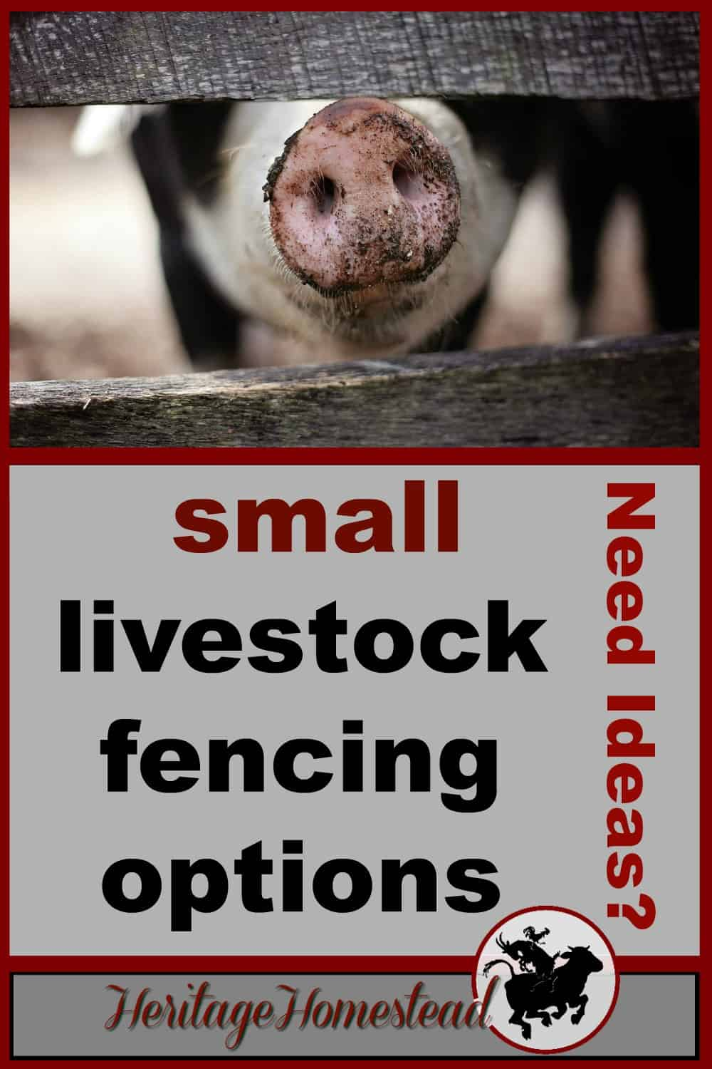 Fencing for Goats and Small Livestock - A Life Of Heritage
