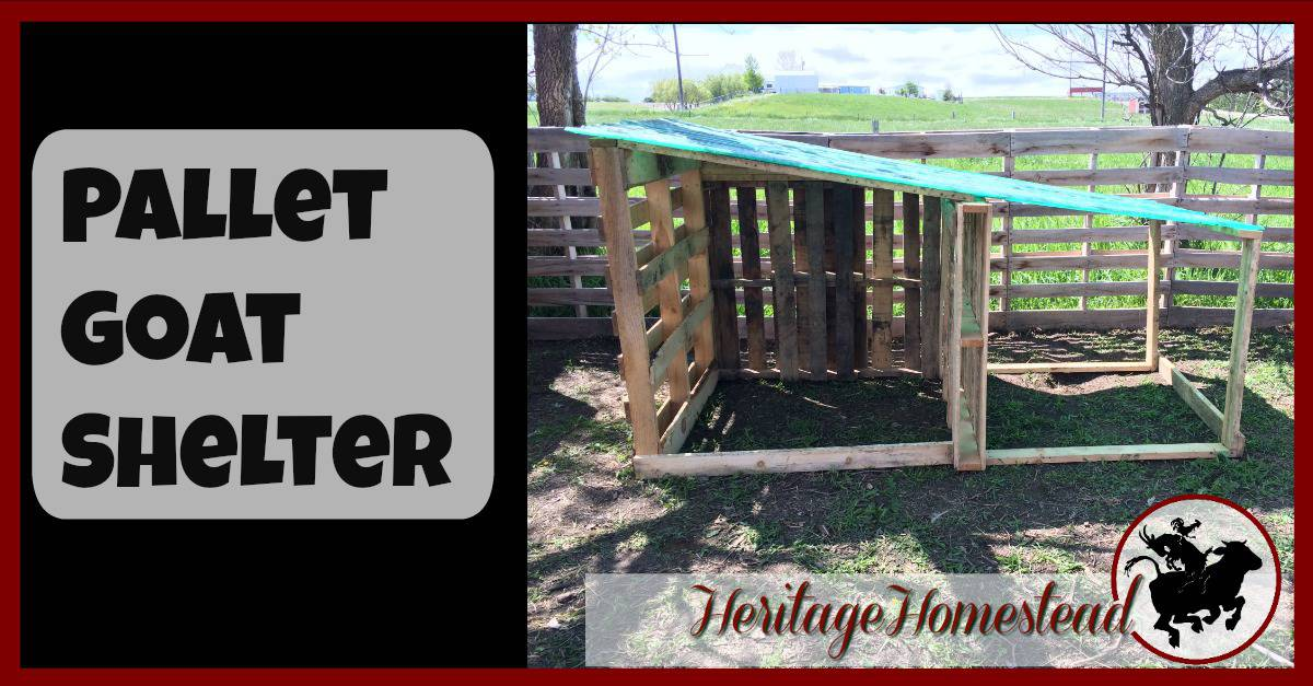 DIY, Easy, Free Goat House with Pictures