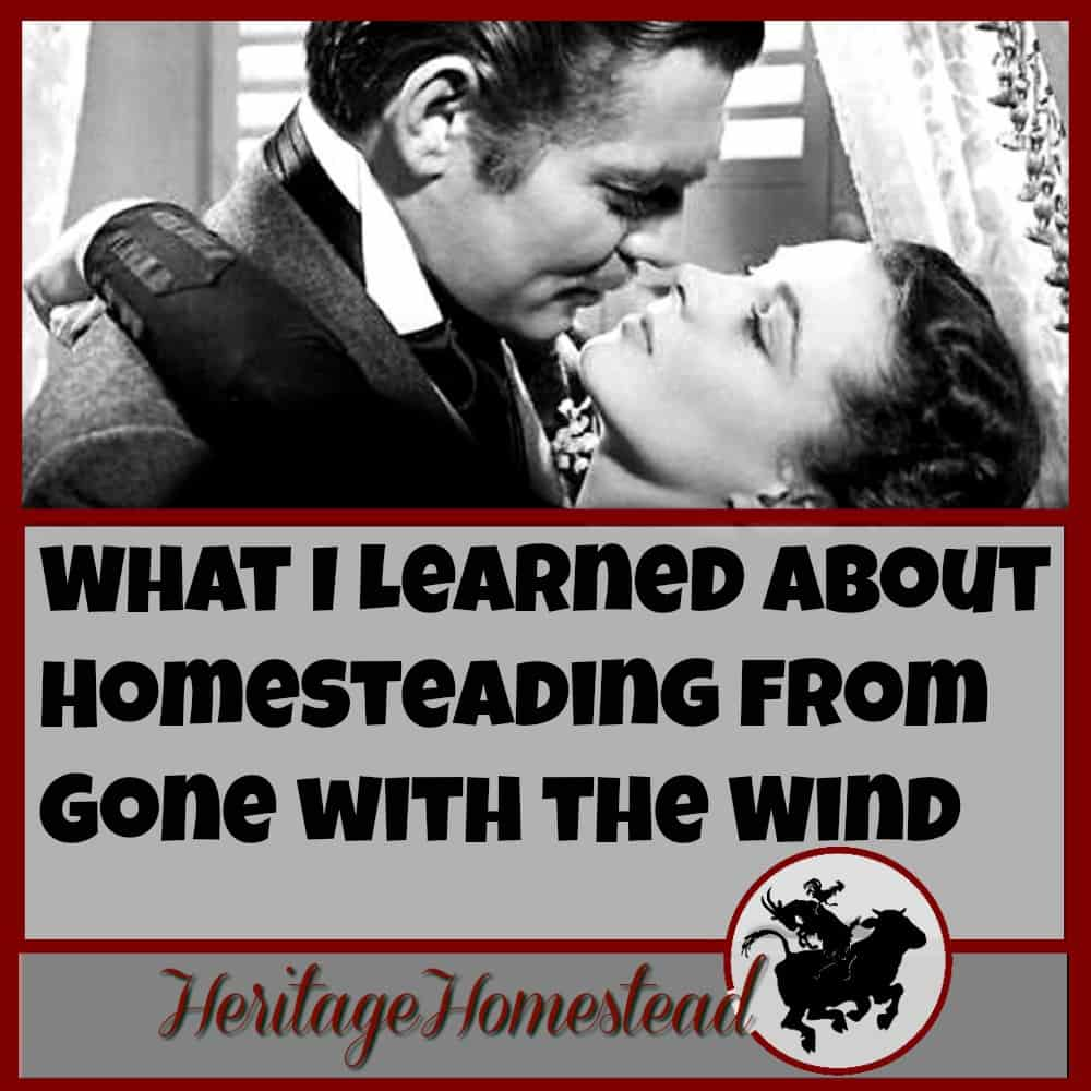 What I Learned about Homesteading from Gone with the Wind