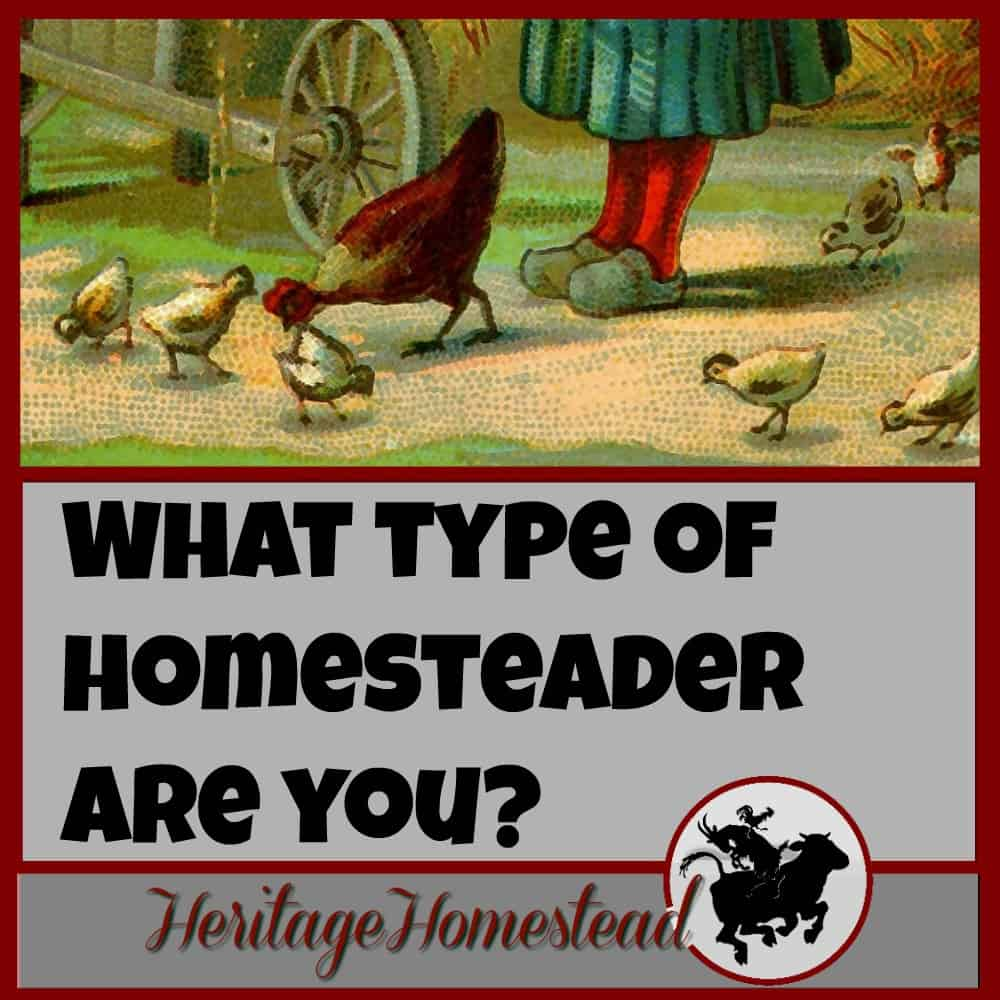 Homesteading | Take this fun quiz to find out where you fall in the spectrum! And let me know your results! What a journey we are on, right?