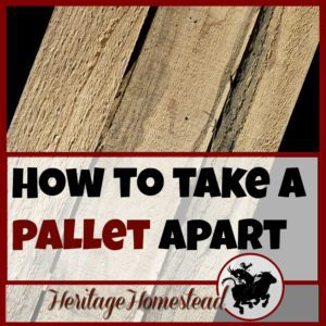 Pallets | Build with Pallets | Pallets are the best invention ever for those of us who value the high cost of free wood. Watch this helpful video to see how to take a pallet apart.