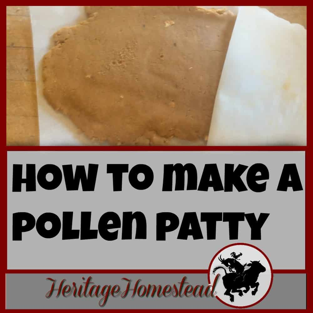 How to make (pollen patties)