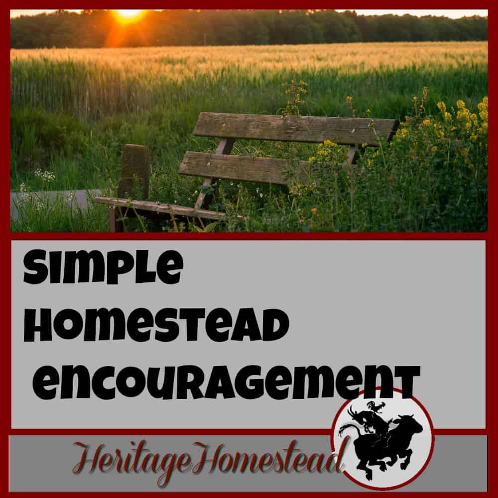 Simple Homestead Blog Hop #86