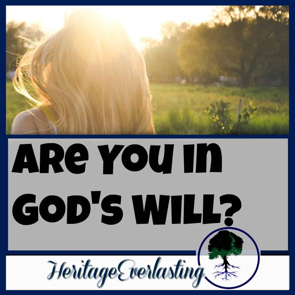 Are You in God's Will?