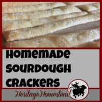 Homemade crackers | Sourdough crackers | Soup crackers | Thin, crispy & flavor filled sourdough KAMUT wheat cracker uses the organic and non-genetically altered wheat. Great for dips, cheese and a snack by itself