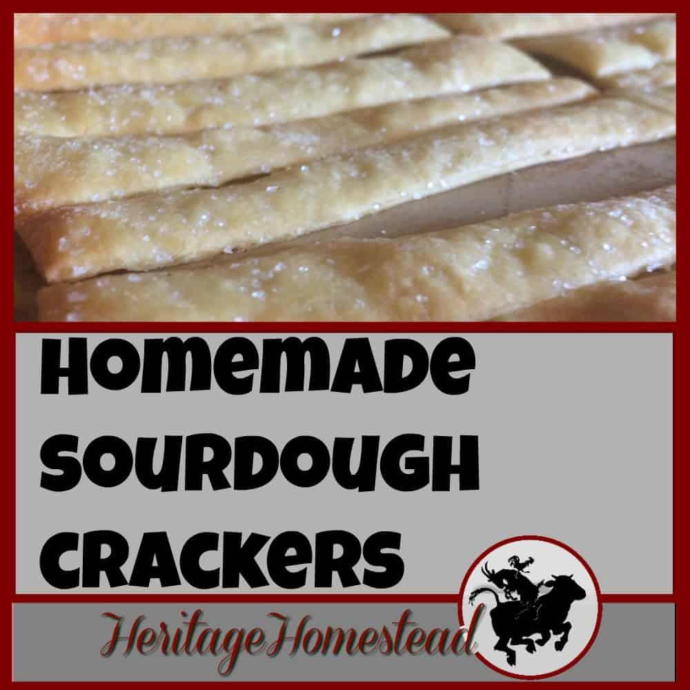 Homemade Sourdough KAMUT Wheat Cracker