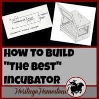 Incubating eggs | Build an incubator | Hatching eggs | How to build the best incubator. The incubator you choose is the most important decision you will make if you plan on regularly hatching eggs.