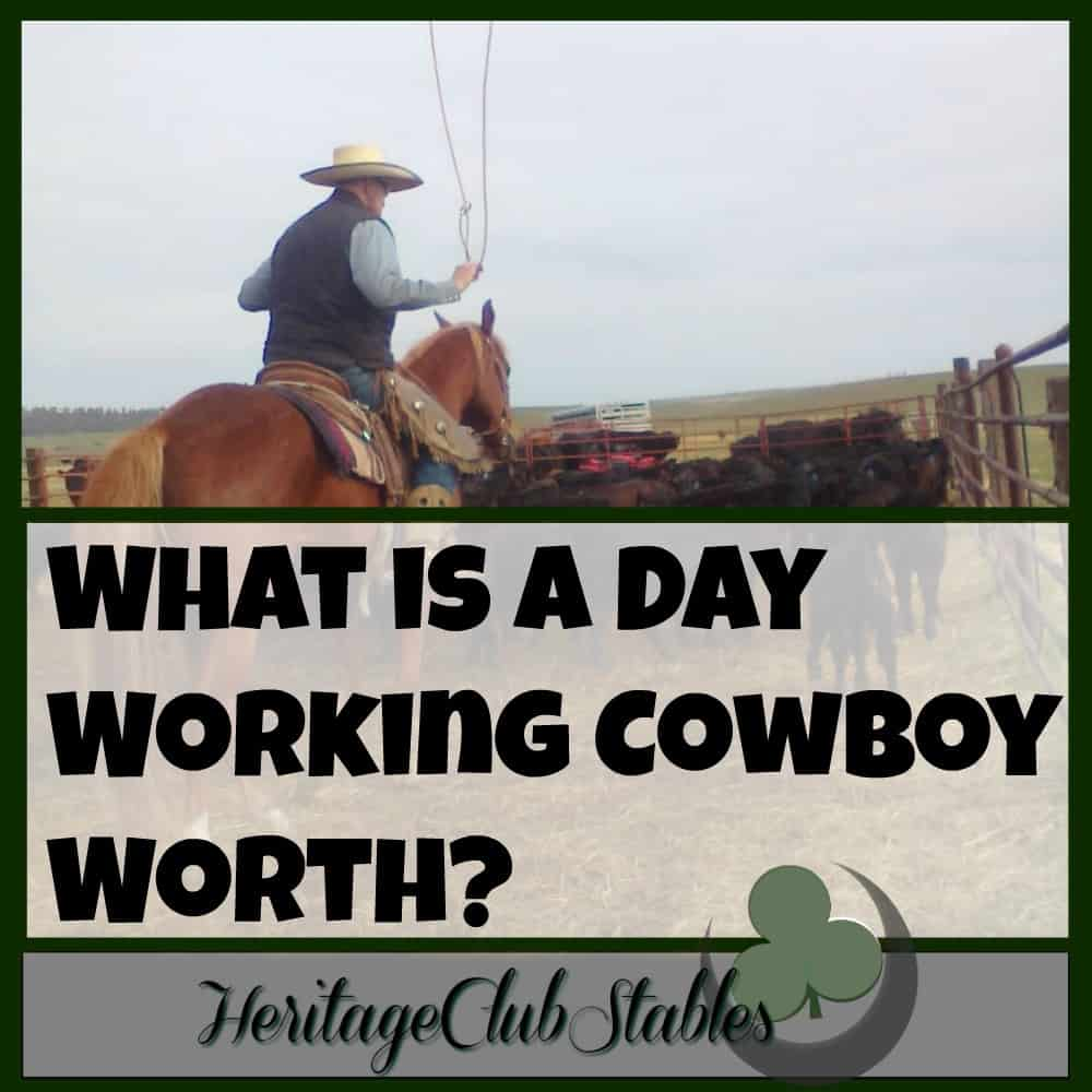 What is a Day Working Cowboy Worth?