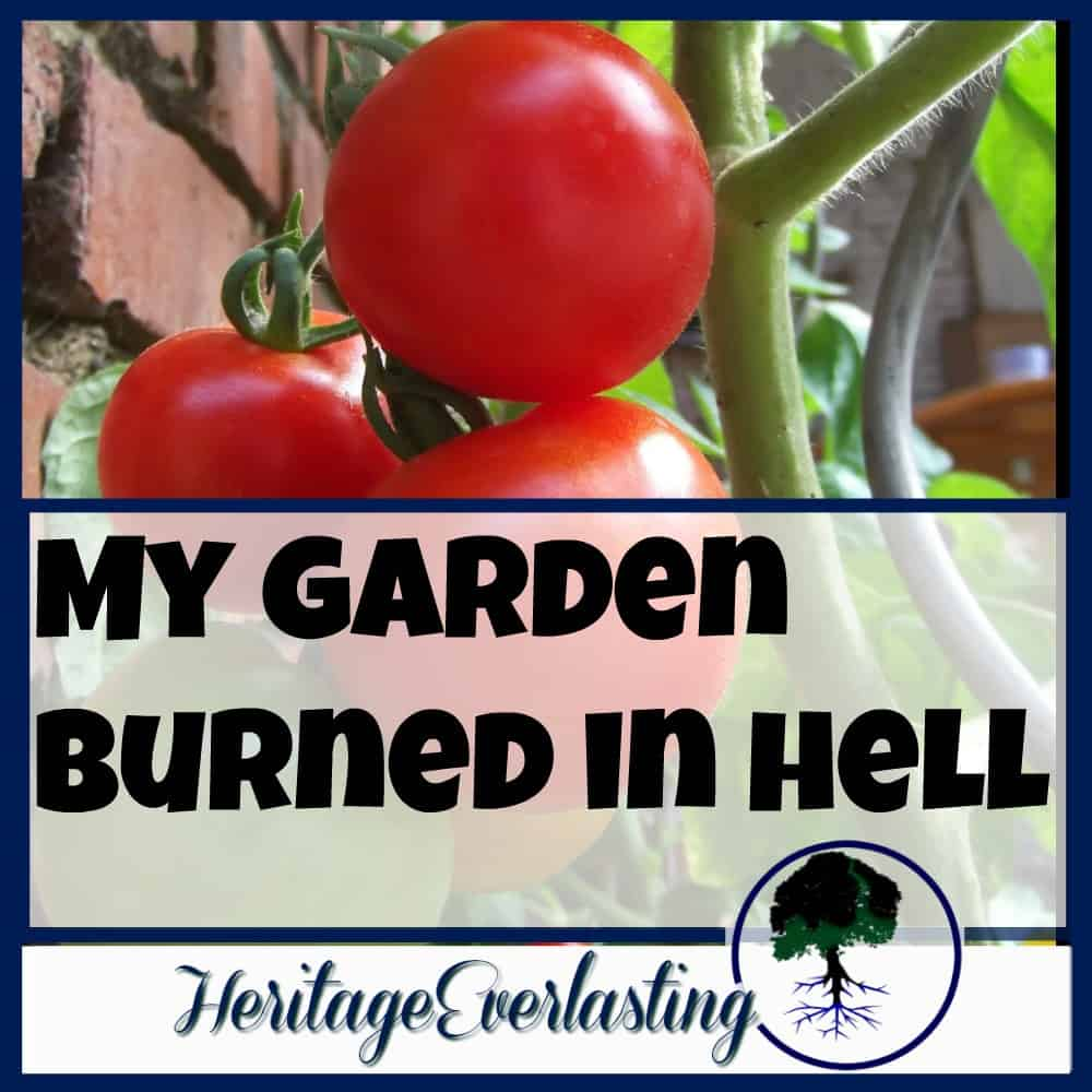 My Garden Burned in Hell