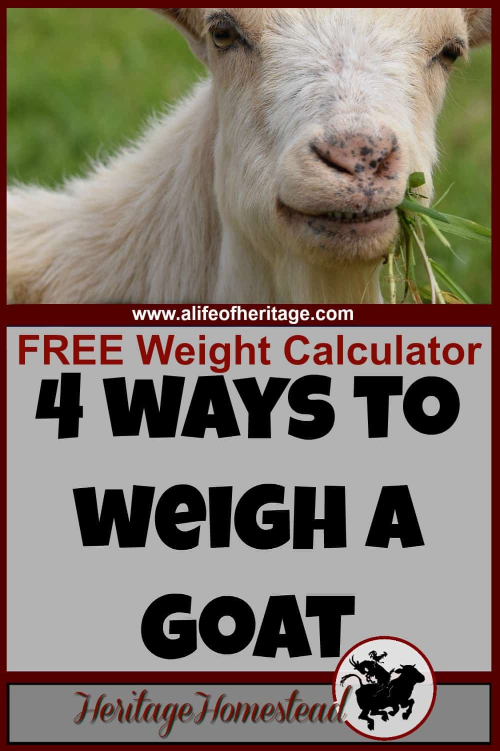 Goat weight 4 easy ways to weigh a life of heritage goat care goat weight calculator how do i know my goats weight geenschuldenfo Image collections