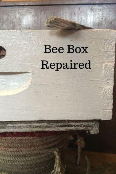 white bee super painted and repaired