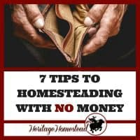 Homesteading | Money Making Homestead | Begin Homesteading | Starting to Homestead | Farm life | How to Homestead | 7 tips to homesteading with no money. You can set out with this 7 step plan and each year get closer to your homesteading dreams. Just don't give up.