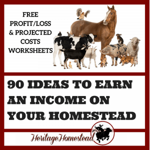 Homesteading | Making money on a Homestead | Earn an income homesteading | Homesteading income | Money making homestead | FREE PROFIT/LOSS & PROJECTED COSTS WORKSHEETS. What does it take to be profitable homesteading? Over 90 ideas to get you started!