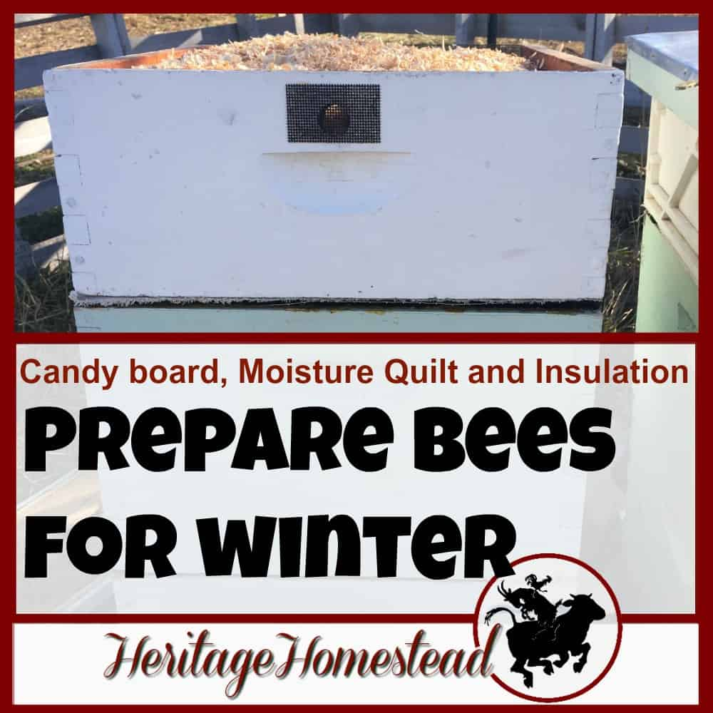 Bees in Winter: Moisture Quilt, Candy Board and Insulation