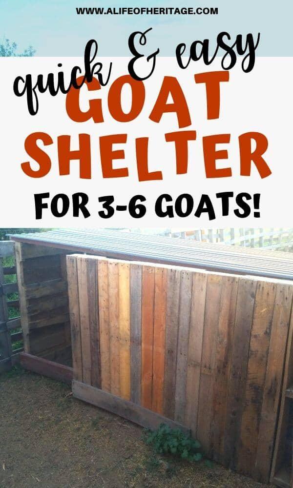 Goat pallet shelter plans