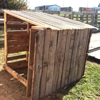 Pallet goat house is so easy to make!