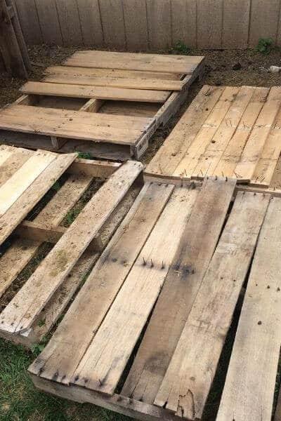 Tearing a pallet apart for a goat pallet shelter