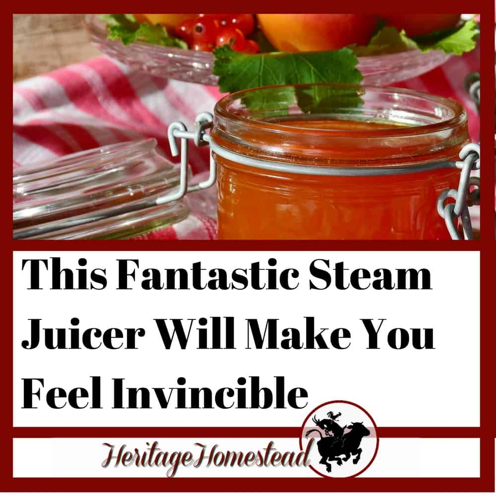 This Fantastic Steam Juicer Will Make You Feel Invincible