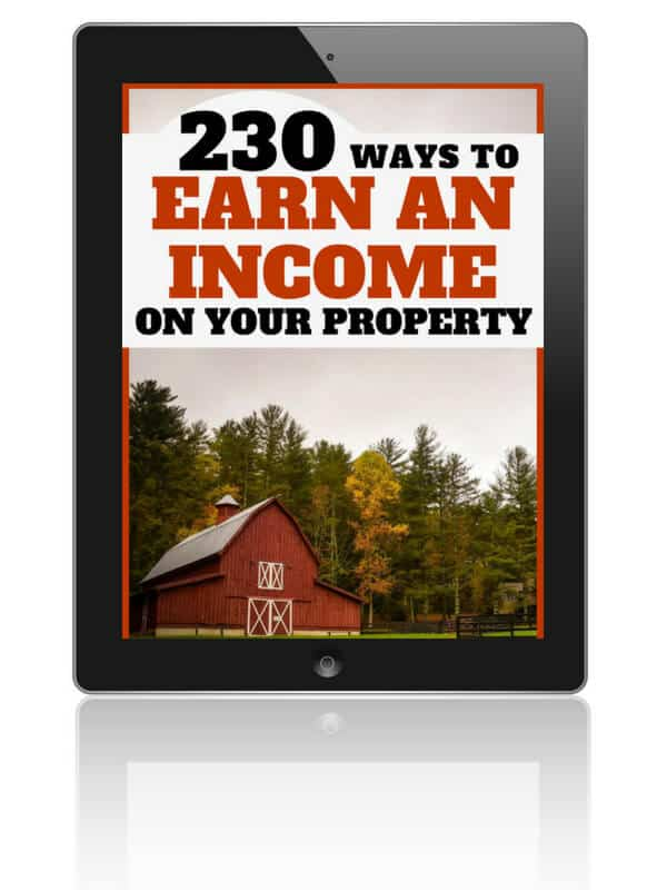 You can earn money on your property. Here are 230 ideas to help you get started!