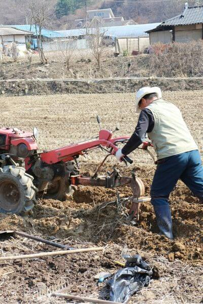 Tilling a garden is harmful to the soil health