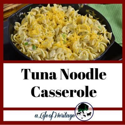 Easy (and Inexpensive) Tuna Noodle Casserole!