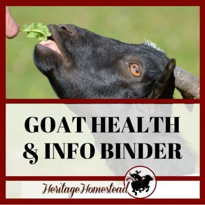 Goat Binder for Health, Care, and Organization