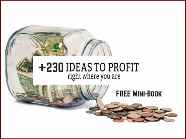 Free signup up for a mini-book on 230 ideas on how to profit on your property