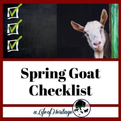 Get your spring goat checklist ready
