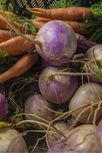 Turnips are an easy vegetable to grow and are a great spring vegetable.