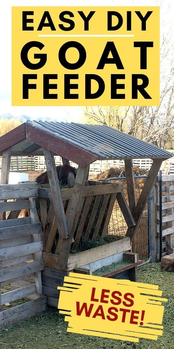 Easy diy goat feeder made with mostly pallets