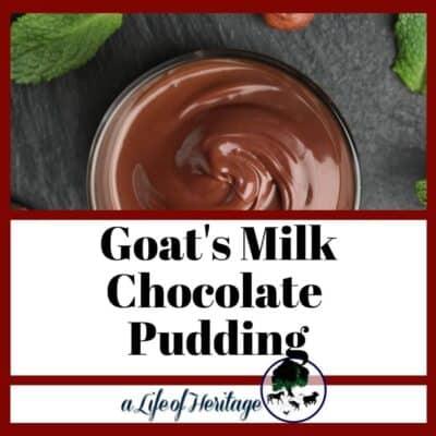 Easy Homemade Goat's Milk Chocolate Pudding! 😋