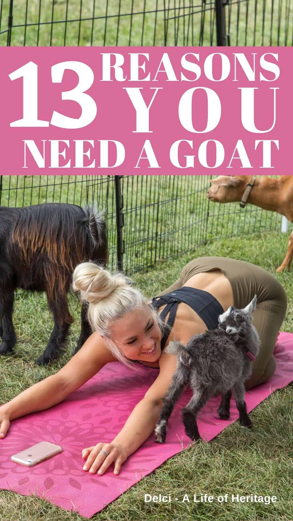 Young lady doing yoga surrounded by goats