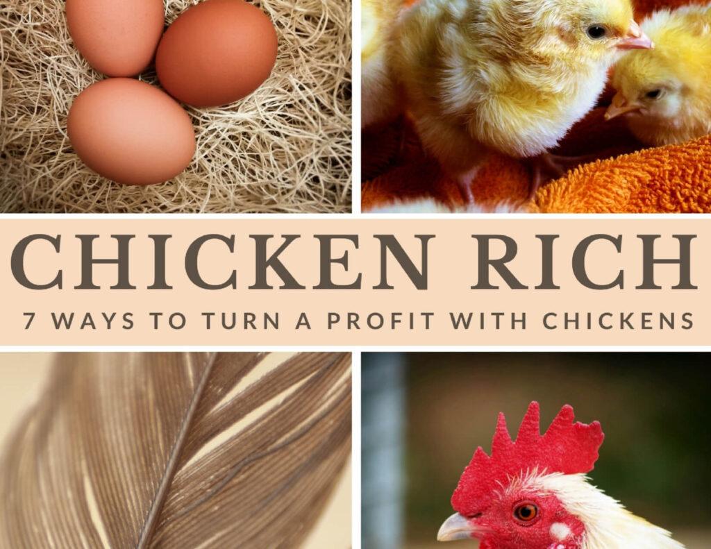 Chicken rich